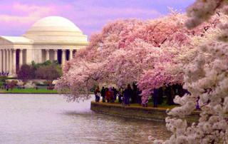 Washington DC 2